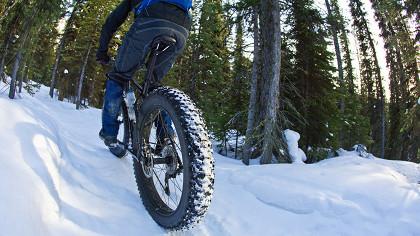 La Winter Downhill - cover