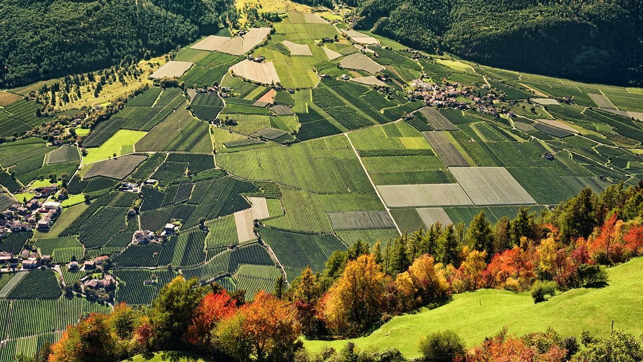 Fields around Naturno