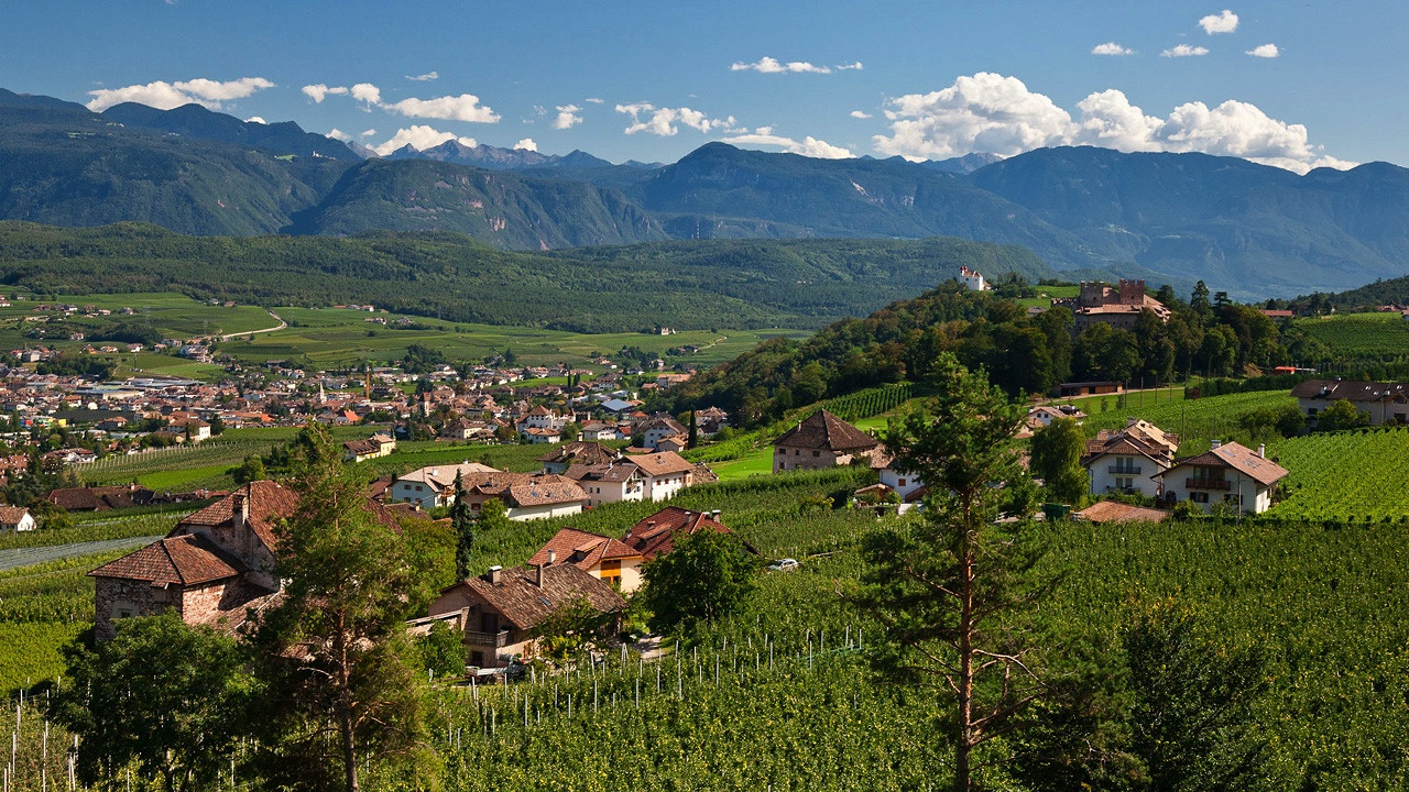 Vineyards Appiano