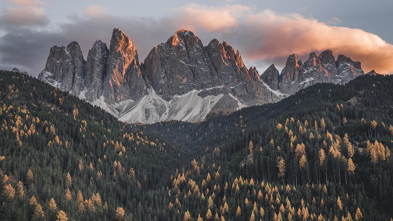 Panorama Forestis Brixen