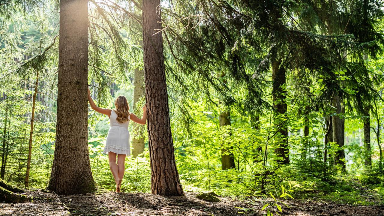 Девушка в лесу  Мой Арбор Отель Брессаноне